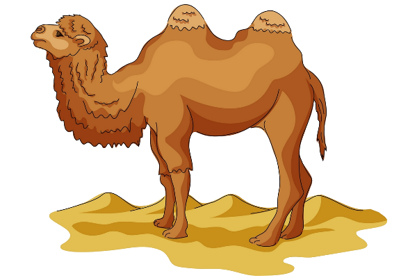 Camel Transparent Png Background Hd image #37115