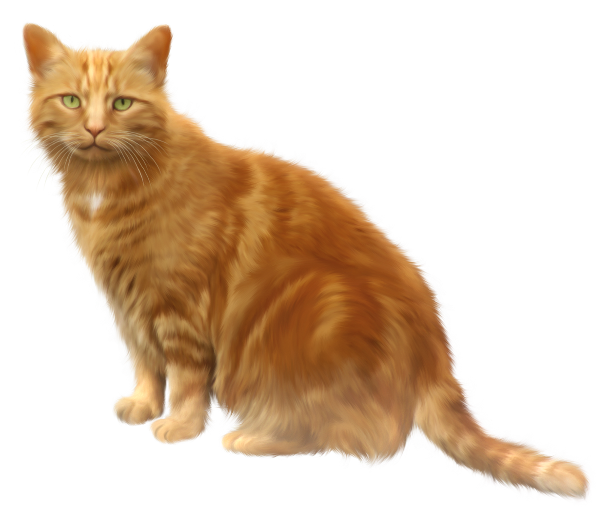 Transparent Cat Png Background