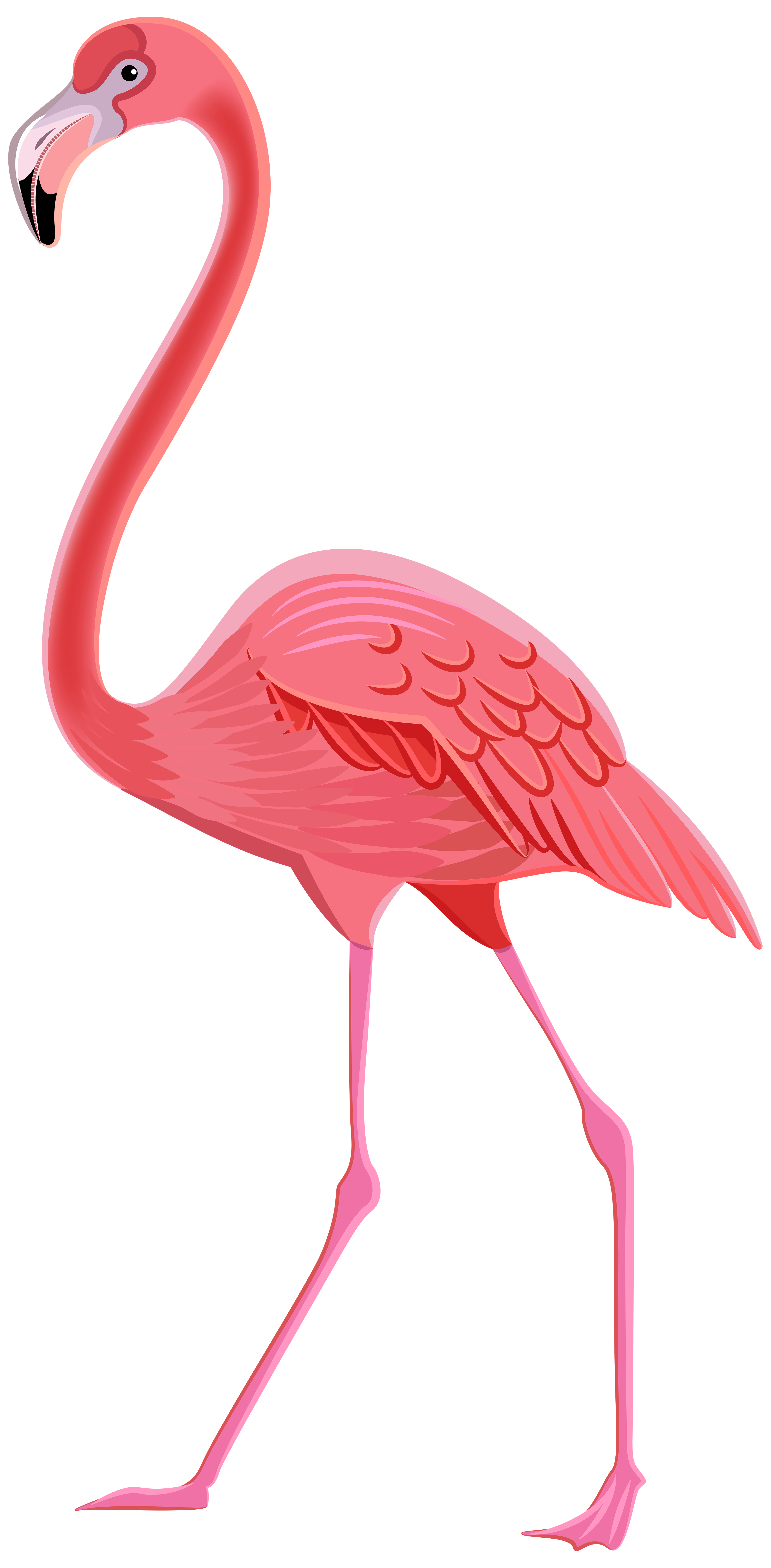Flamingo Transparent PNG Pictures - Free Icons and PNG ...