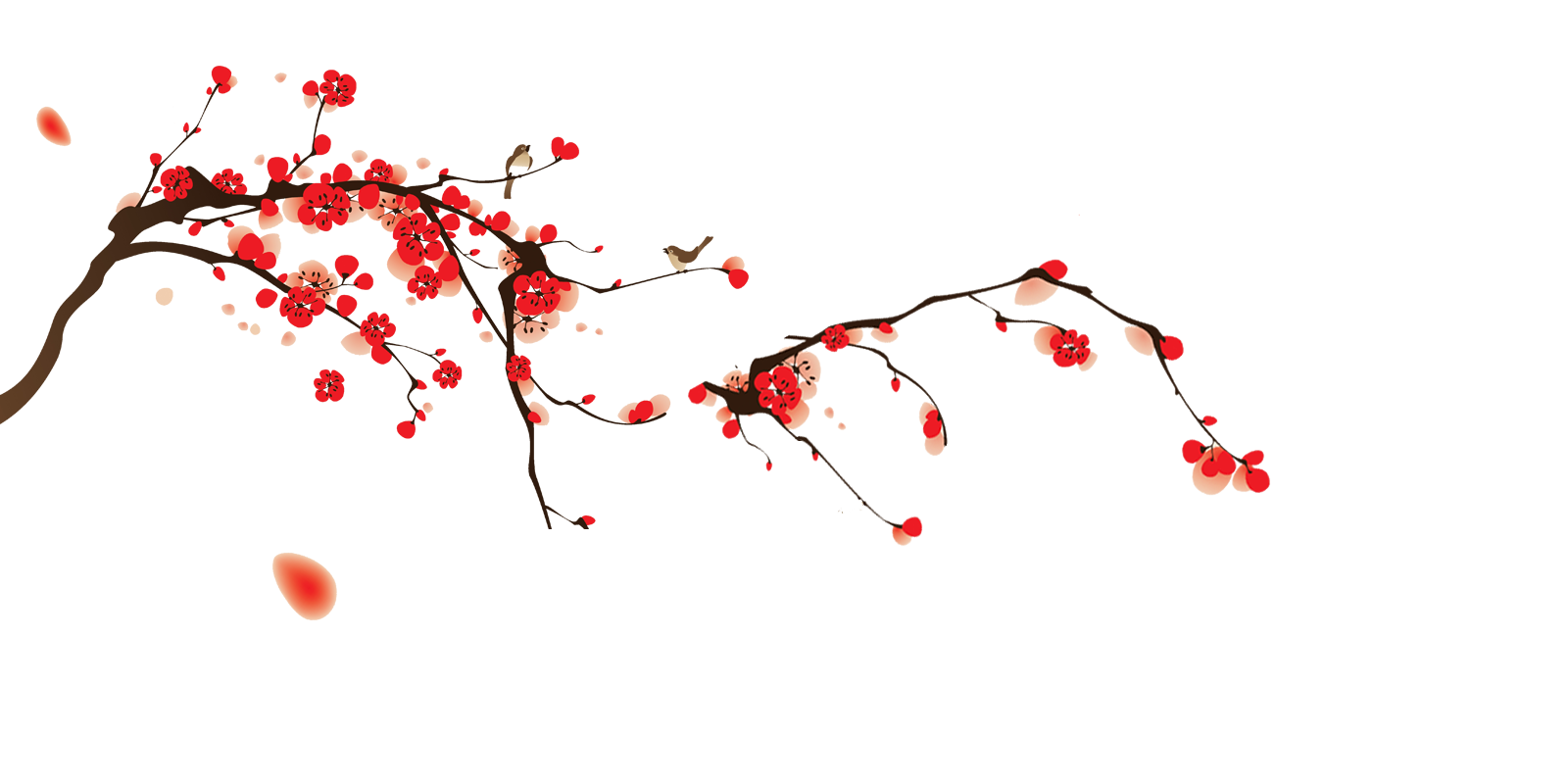 Cherry Blossom Png Free Vector Download image #45507