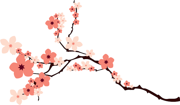 Cherry Blossom PNG Transparent Image image #45505