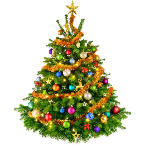 Free Download Of Christmas Tree Icon Clipart image #35283