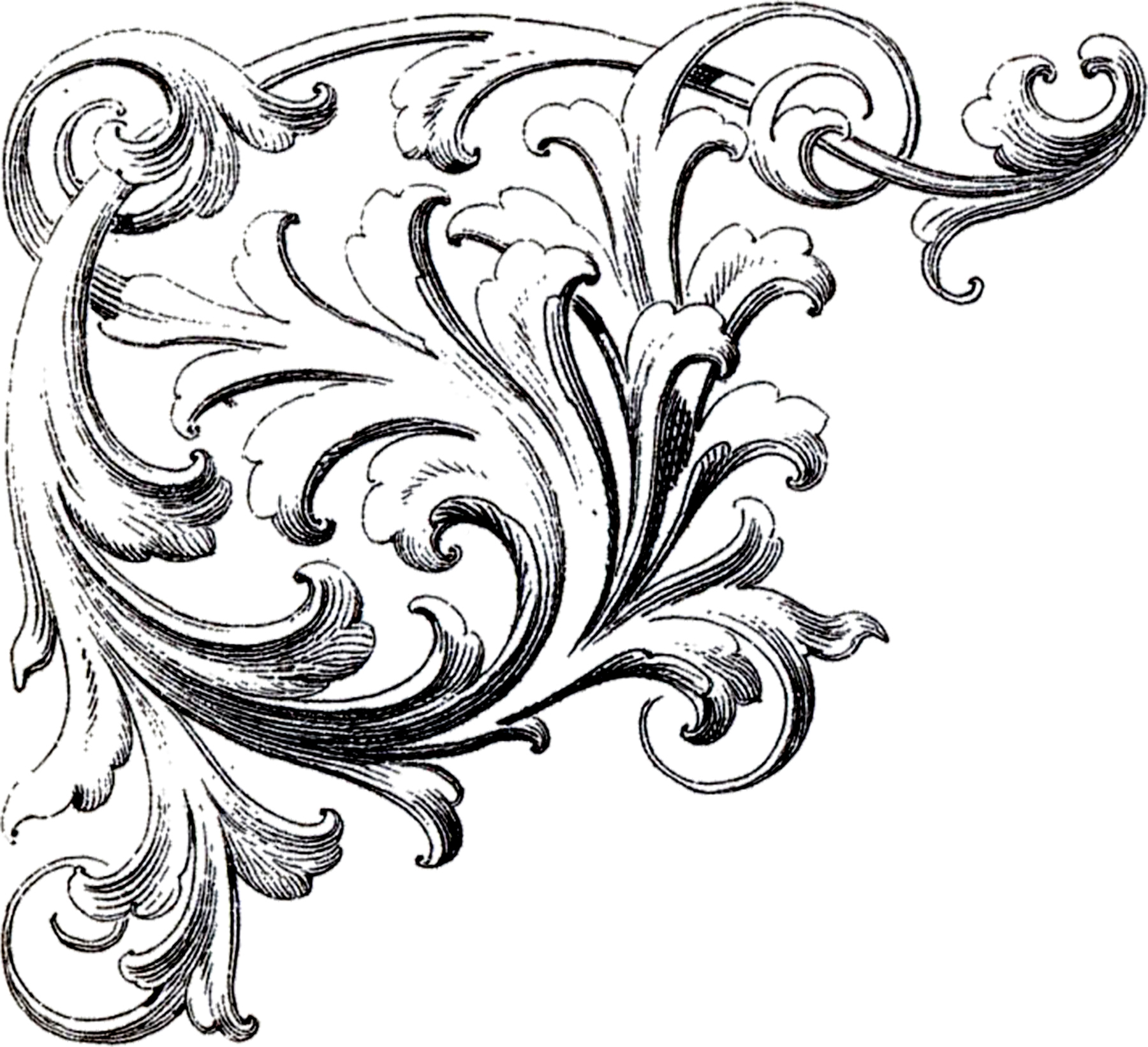 Clipart Free Images Corner Ornament Best image #27866