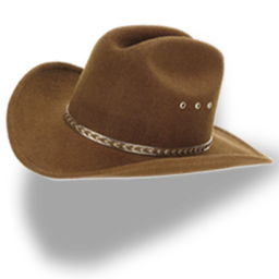 Best Clipart Free Images Cowboy Hat Png Transparent Background Free Download Freeiconspng