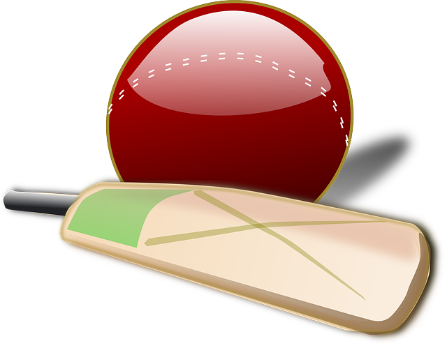 cricket ball clipart png