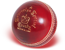 Download And Use Cricket Ball Png Clipart image #28887
