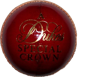 Cricket Ball Png image #28896