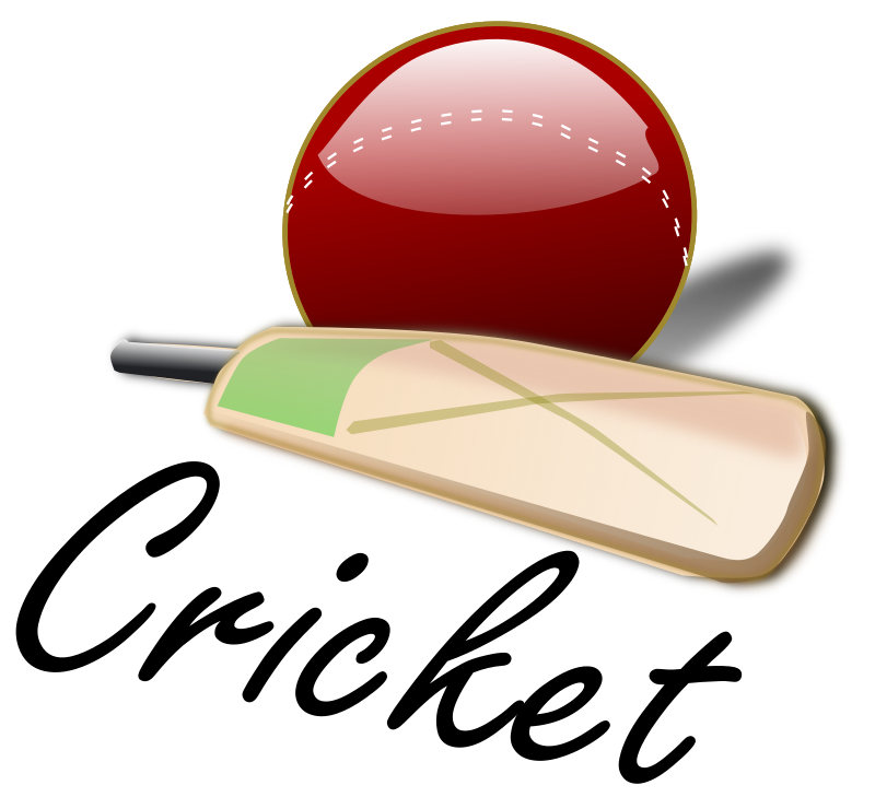 Cricket Ball Png image #28899