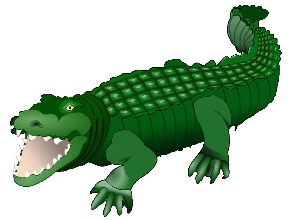gaping crocodile drawing