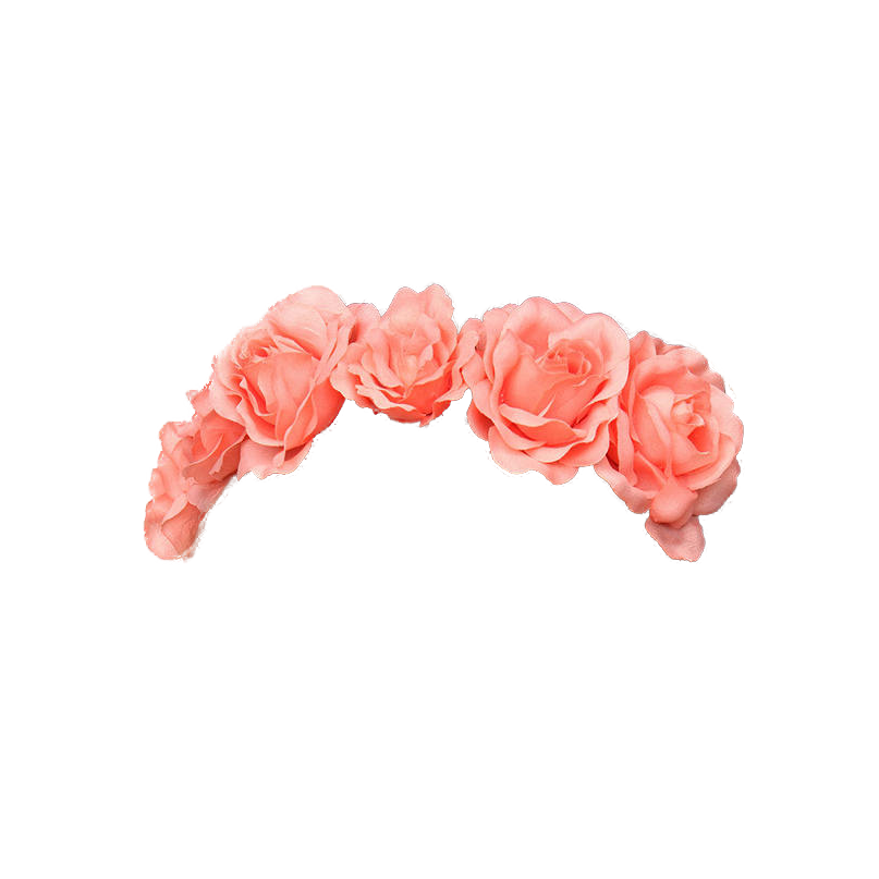 Crown Of Flowers Png image #42593