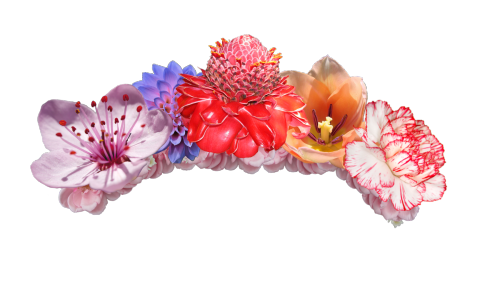 Crown Of Flowers Png image #42586