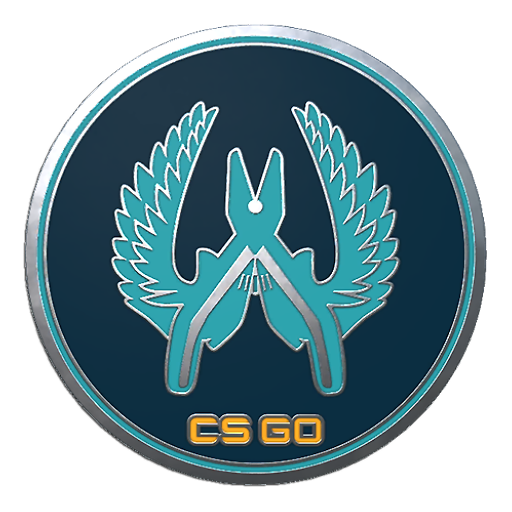 Csgo Collectible Pin Guardian Png Icon image #42860