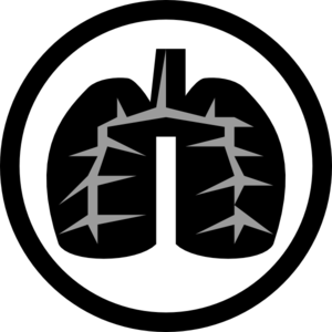 Damage, lungs, organ, smoke, smoking icon