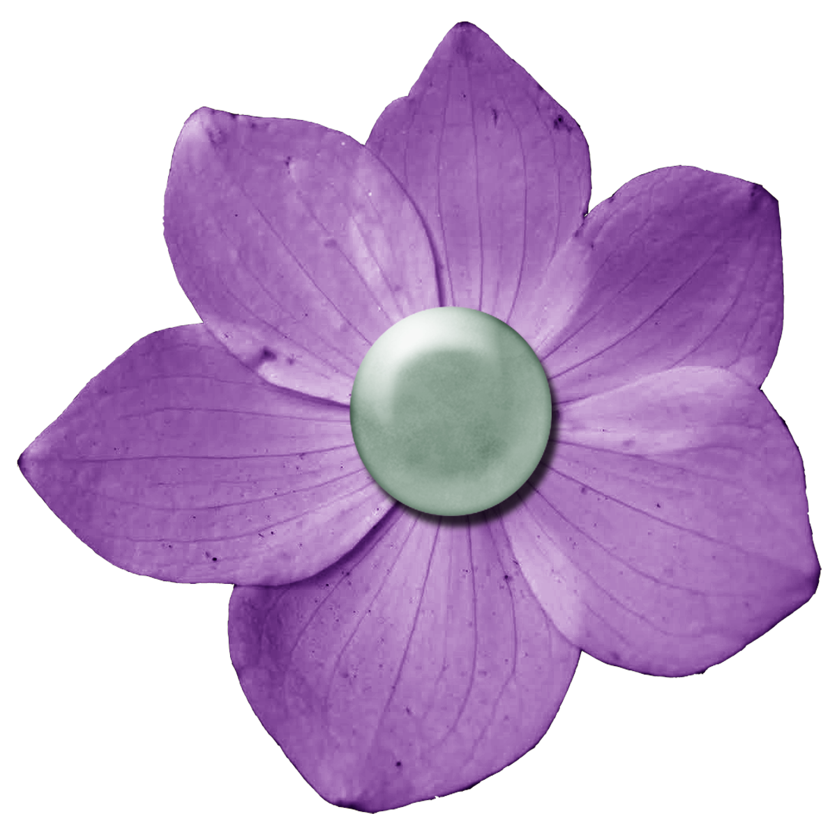 dark purple flower png