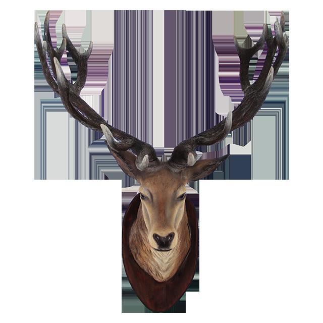 Clipart PNG Deer