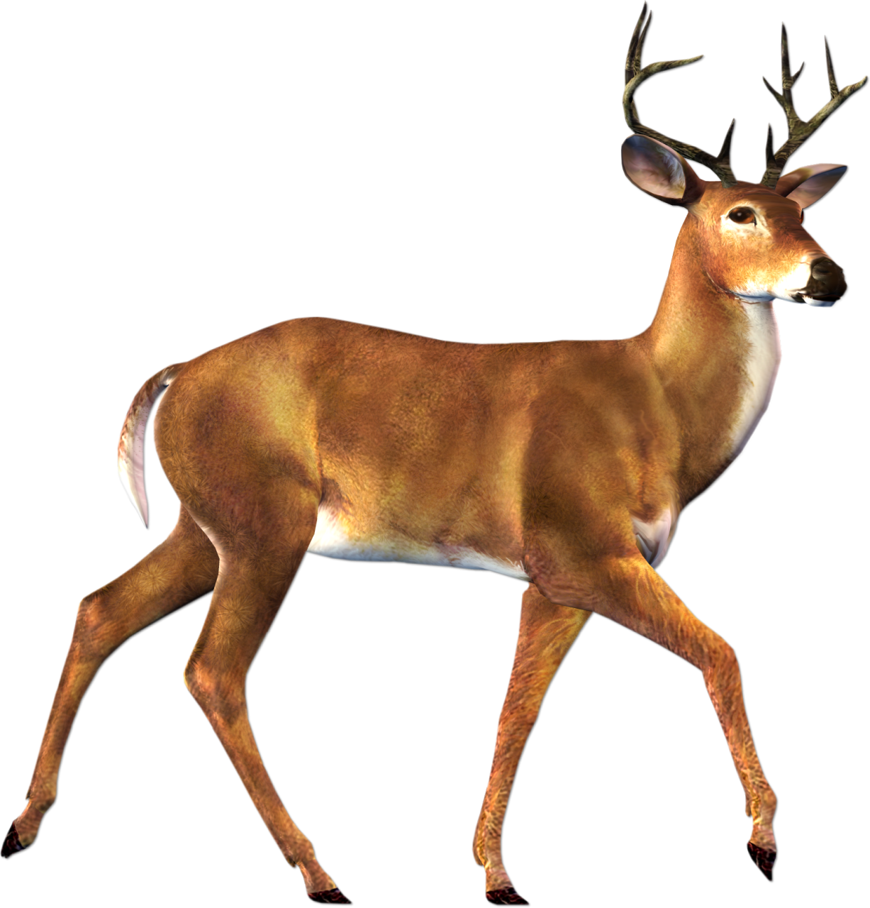 Free Download Of Deer Icon Clipart image #32757