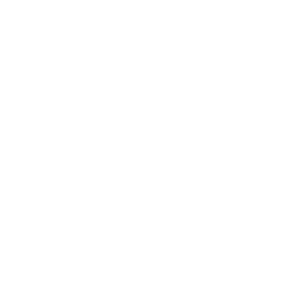 Description White plane icon 2