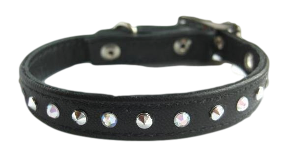 Dog Collar Custom Black Transparent Photos image #48108