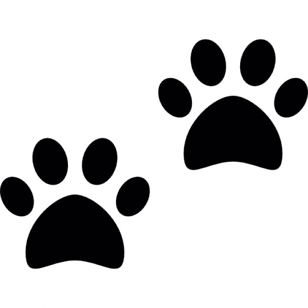 dog paws prints icon