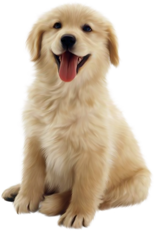Download For Free Dog Png In High Resolution image #22667