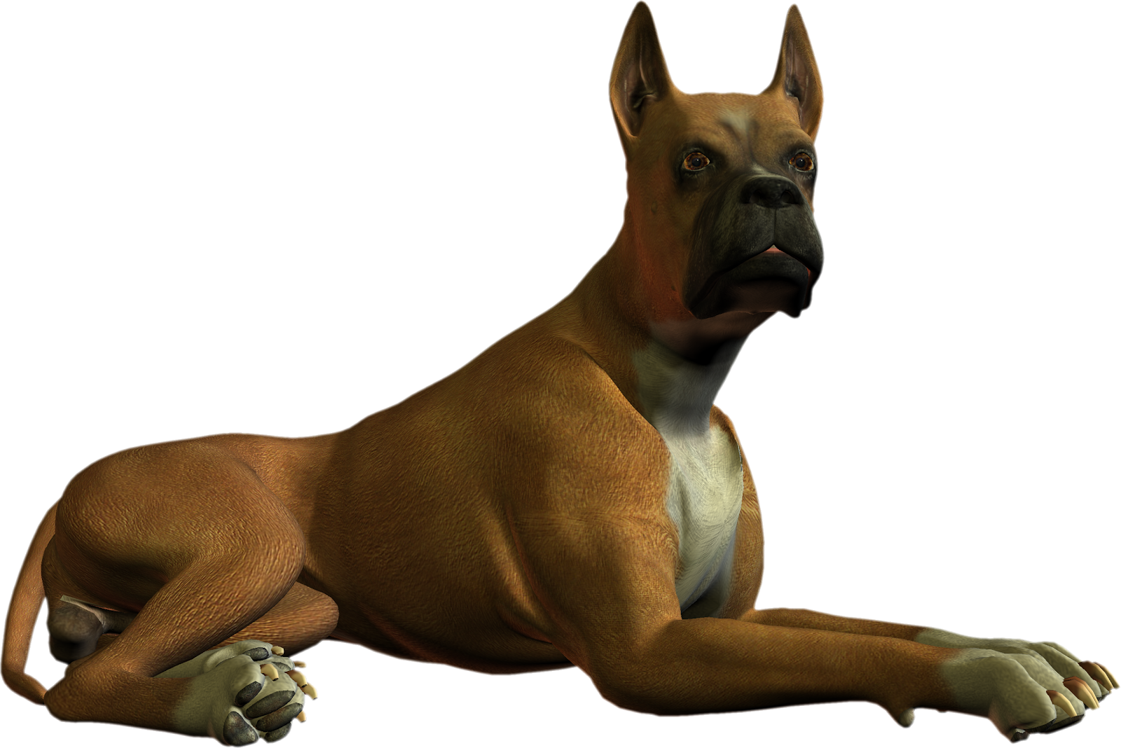 High Resolution Dog Png Clipart image #22646