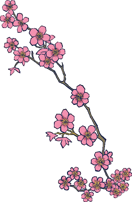 Download Cherry Blossom HD Png Clipart image #45512