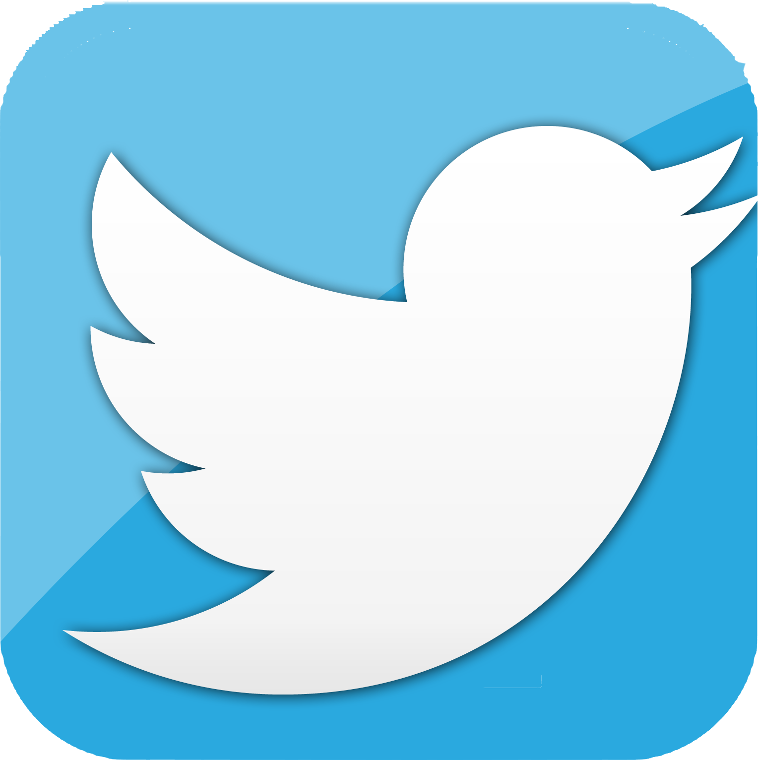 Download Logo Twitter Icon Png Transparent Background Free Download 47457 Freeiconspng