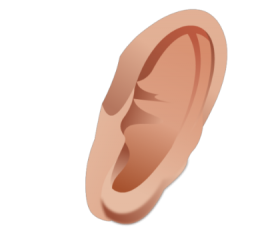 Ear Png Clipart image #2647