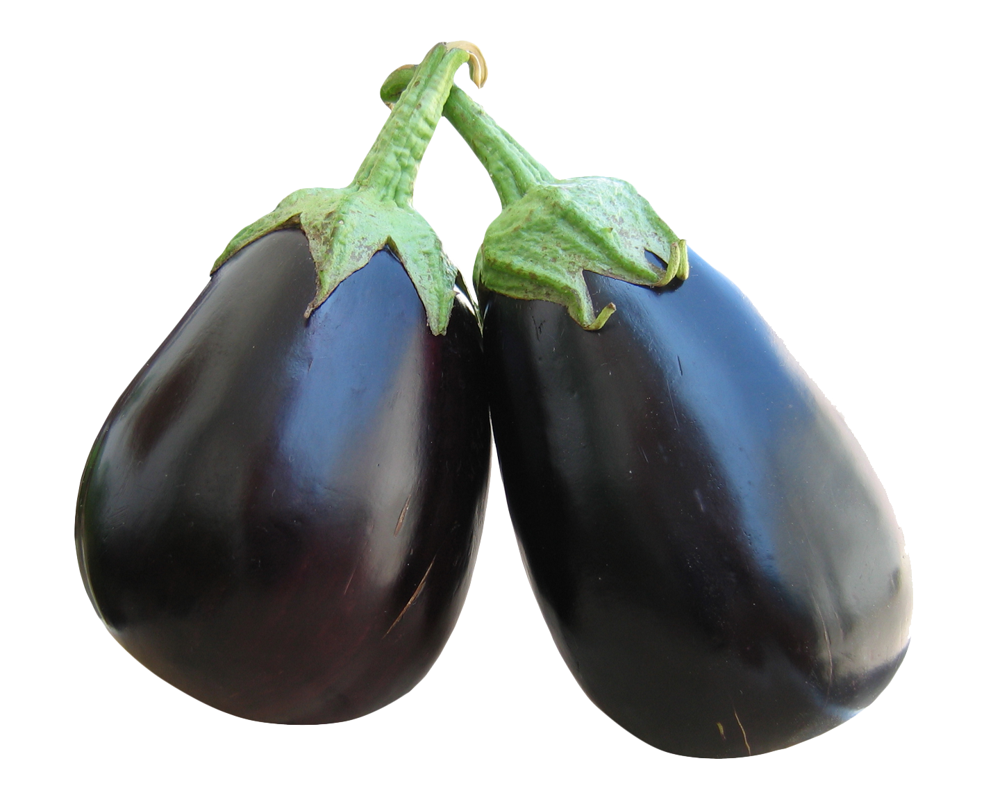 Eggplant Picture Download