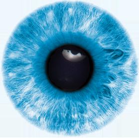 Eye Png image #42322