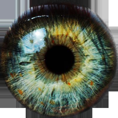 Eyes Png image #42316