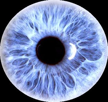 Eyes PNG File image #42305