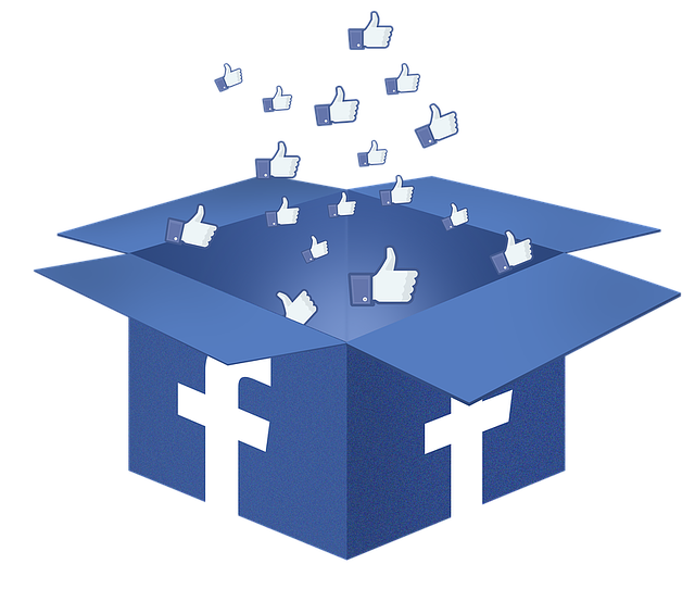 Facebook Box Like Transparent image #38359