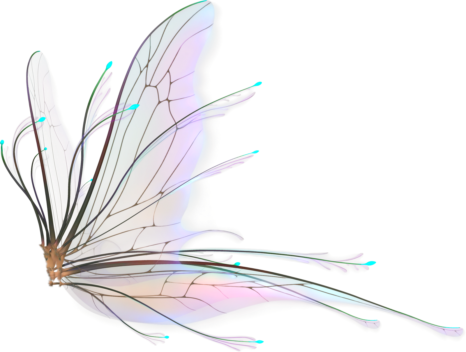 Fairy Wings Png Hd image #36475