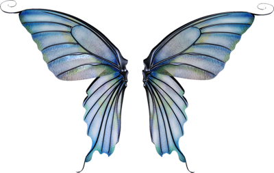 Fairy Wings Png Image image #36469