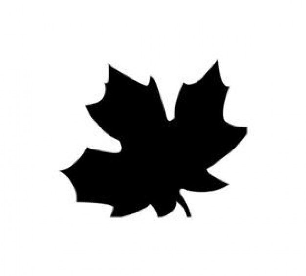 Fall Leaf Icon image #41724