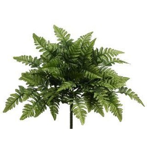 Fern Icon Png image #26198
