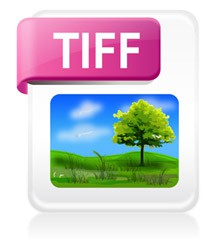 filetype, image, tiff icon