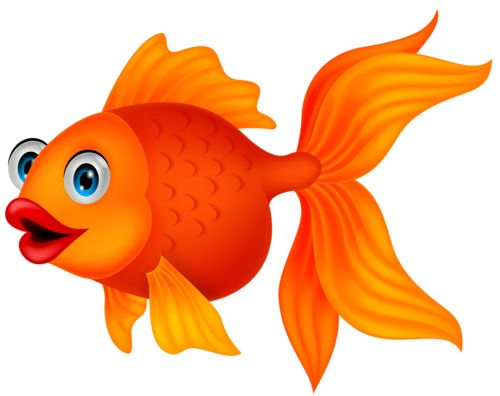 Fish Png Available In Different Size