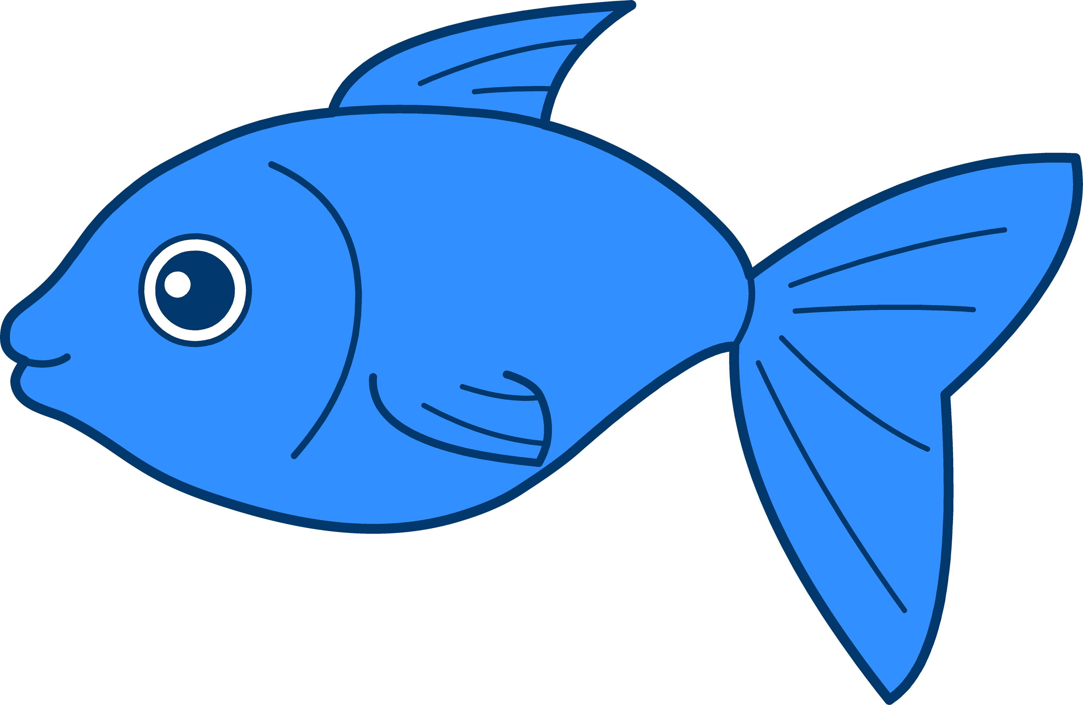 Png Fish Collection Clipart image #26335