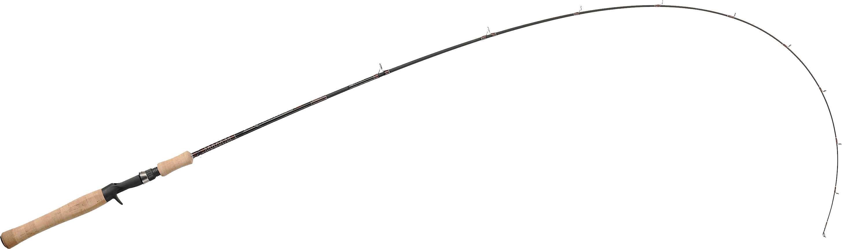 Fishing Pole PNG Transparent