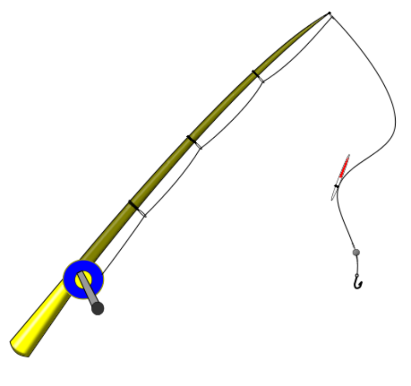 fishing rod for catching fish
