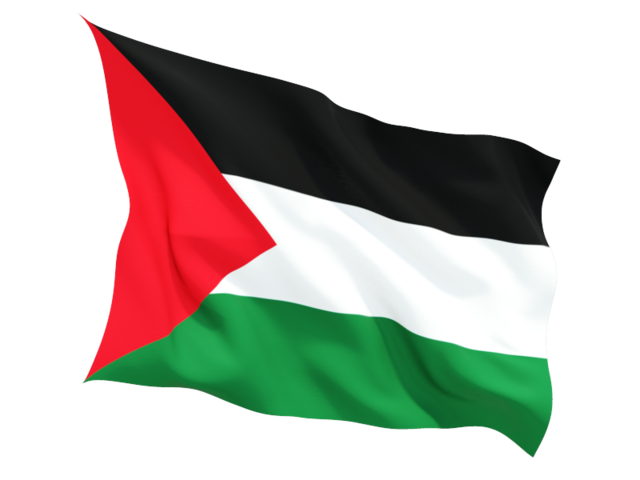 Flag Of United Palestine Png image #38271