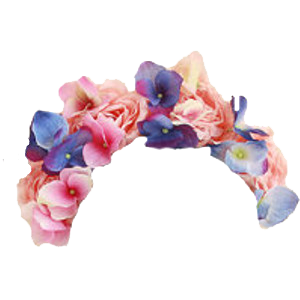 Floral Flower Crown Png image #42596