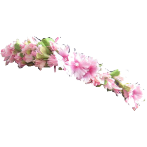 Flower Crown Png image #42598