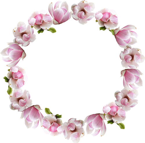 Flower Crown Png image #42608