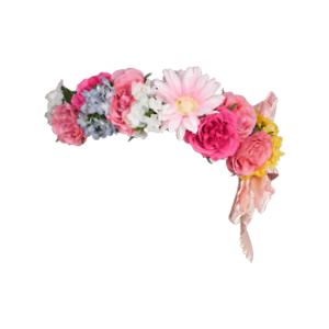 Flower Crown Clipart - Clipart For Work