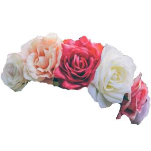 Flower Crown Png Images Transparent image #42603