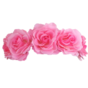 Flower Crown Png Images Transparent image #42591