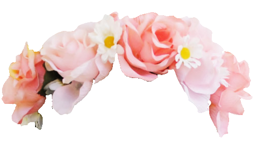 Flower Crown Png Tumblr image #42584